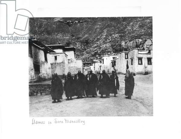 Lamas in Sera Monastery, Lhasa, Tibet, 1903-04 (platinum print)