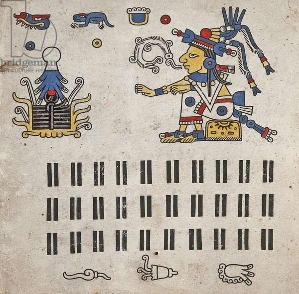 p.8 from the 'Codex Fejérváry-Mayer' (vellum)