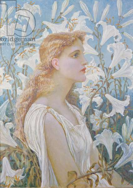 Lilies, 1893 (oil on canvas)