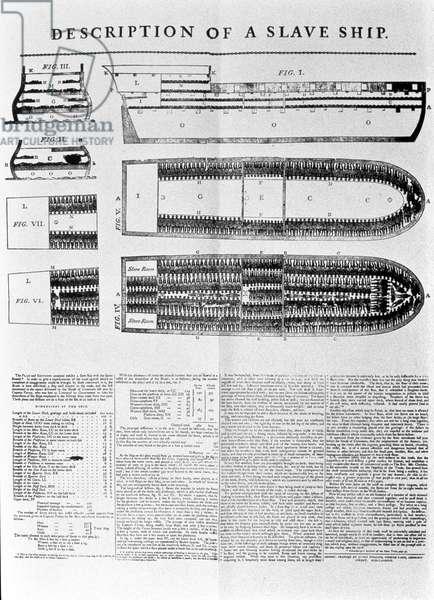 Description of a Slave Ship, 1789 (print)