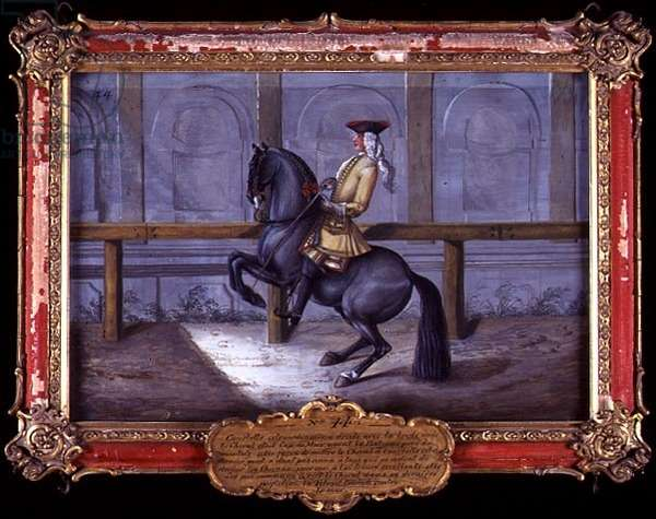 No. 44 A 'Cap de More' horse of the Spanish Riding School, performing a dressage movement called a 'Curvet' (w/c on paper)