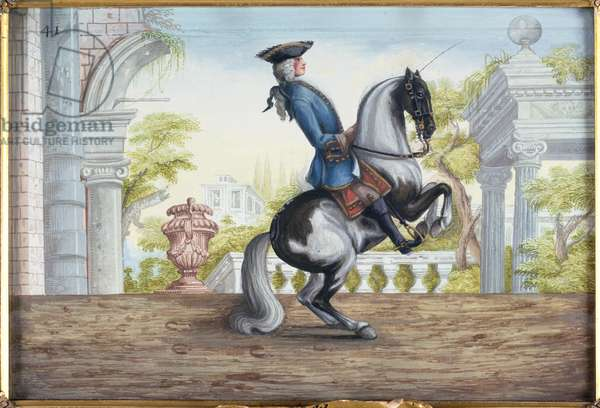 No. 41 A skewbald horse of the Spanish Riding School performing the 'Pesade' (w/c on paper)
