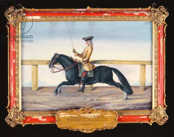 No. 28 A black Spanish horse of the Spanish Riding School performing a dressage movement (w/c on paper)