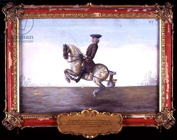 No. 47 A Polish horse of the Spanish Riding School performing a dressage movement called the 'Croupade' (w/c on paper)