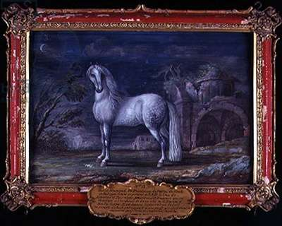 No. 3 'Superbe', a German dappled grey horse from the Spanish Riding School who was famous for his 'piaffe' (w/c on paper)