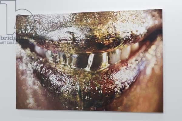 Cheshire (Wangechi Mutu), 2011 (enamel on metal)