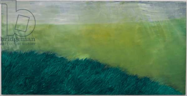 Untitled, 2007 (oil on canvas)
