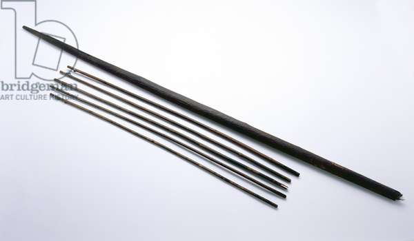 Arrows and bow found with the Oetzi Iceman (wood)
