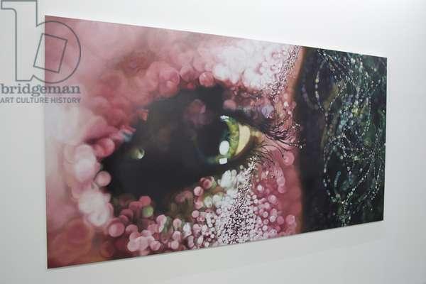 Pink Eye, 2005 (enamel on metal)