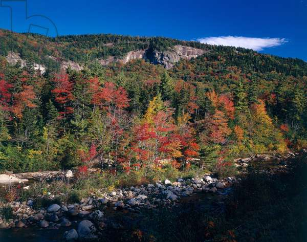 View in the Appalachian Mountains (photo)