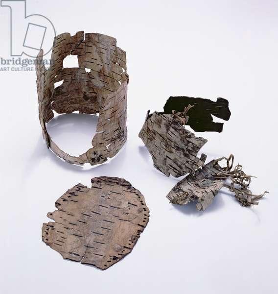Birch-bark container found with the Oetzi Iceman (birch)