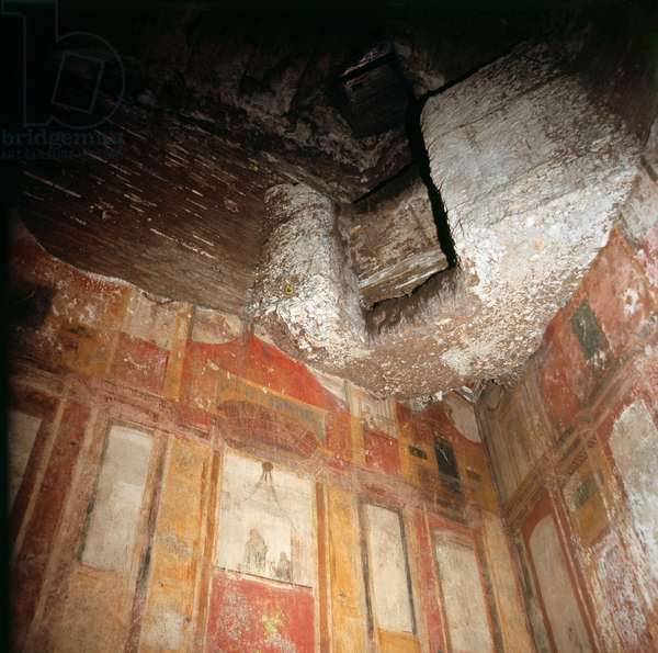 """The decoration in the grotto or cavern in the Golden House """"Domus Aurea"""", of Nero"""