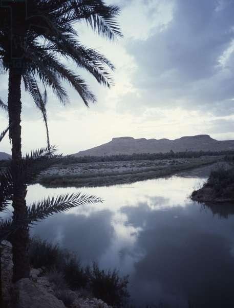 Landscape (near Sijilmasa)