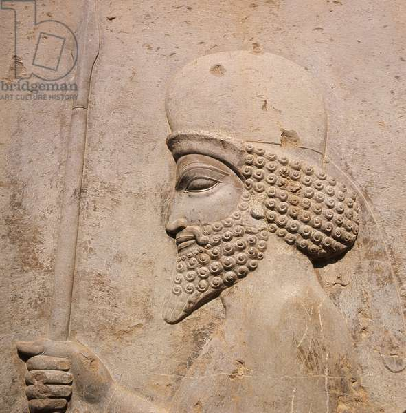 A detail of a relief carving on the staircase leading to the Tripylon at Persepolis, depicting a Mede