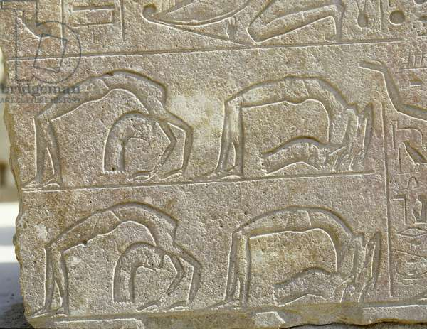 Detail of a relief depicting backward-bending acrobats, originally from the Red Chapel of Hatshepsut