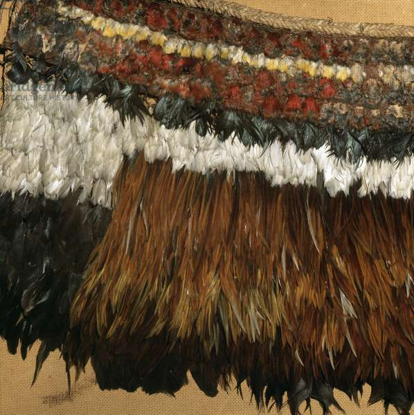Detail of a chief's feather cloak