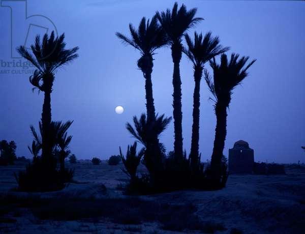 Moonlight at Tafilelt in the Sijilmasa region