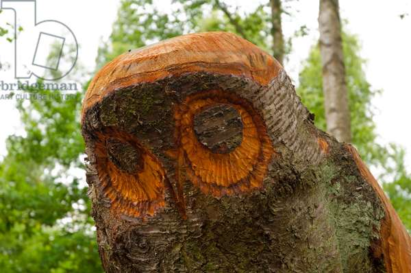 Pooley Country Park Art Trail, Poleworth, Warwickshire, 2011 (photo)