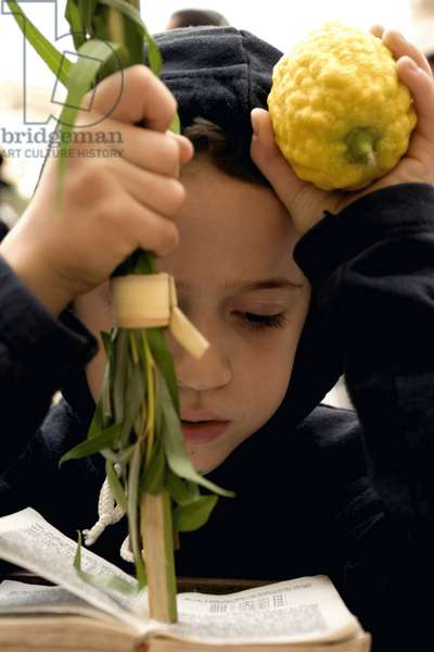 Young Jewish boy with the 'Four Species' for Sukkot (photo)