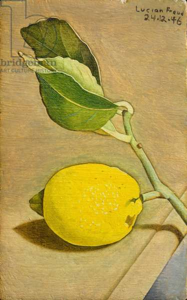 Still Life with Lemon, 1946 (oil on panel)