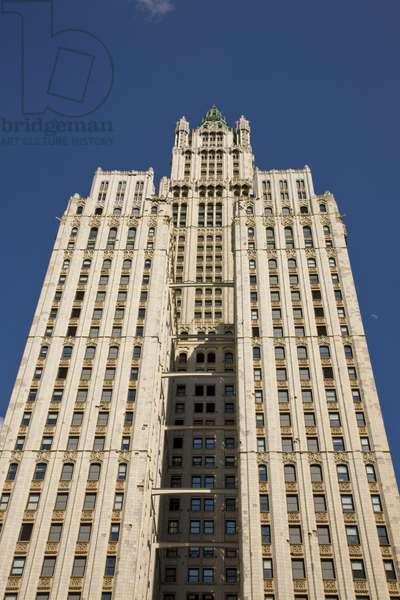 Woolworth Building, New York (photo)