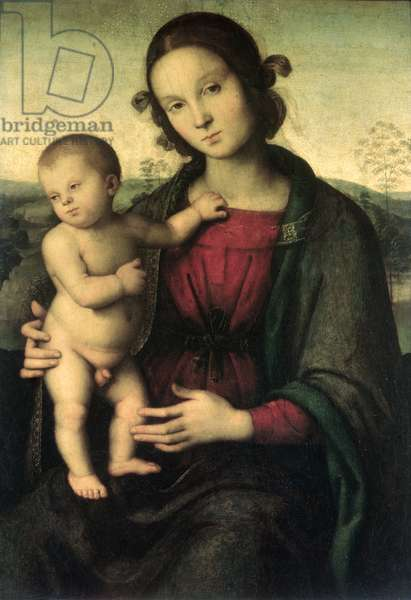 Madonna and Child, c.1495 (oil on canvas)