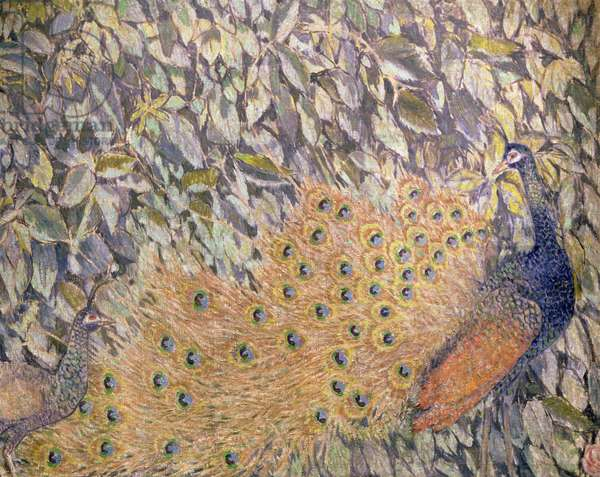 The Peacock, 1907 (oil on canvas)