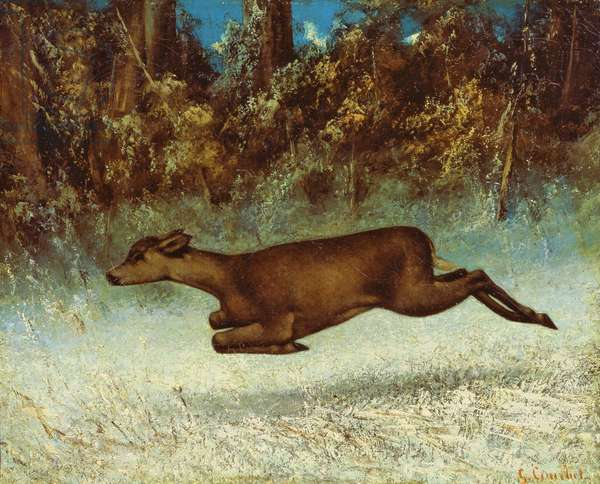 Leaping Doe (oil on canvas)