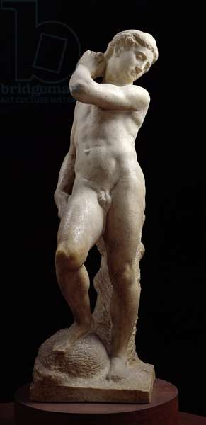 Apollo, or David, c.1530 (marble) (see also 79842-3)