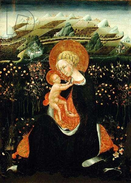 Madonna of Humility, c.1450-60 (tempera on panel)