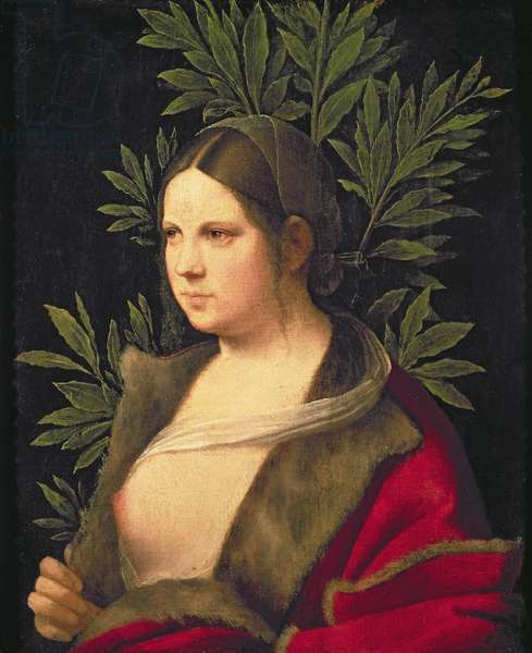 Portrait of a Young Woman (Laura), 1506