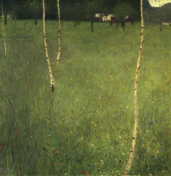 Farmhouse with Birch Trees, 1900 (oil on canvas)