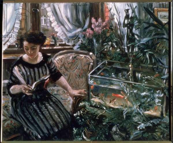 A Woman Reading near a Goldfish Tank