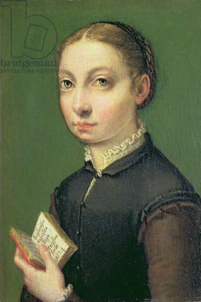 Self portrait, 1554 (panel)