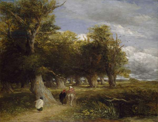 Skirts of the Forest, 1855 (oil on canvas)