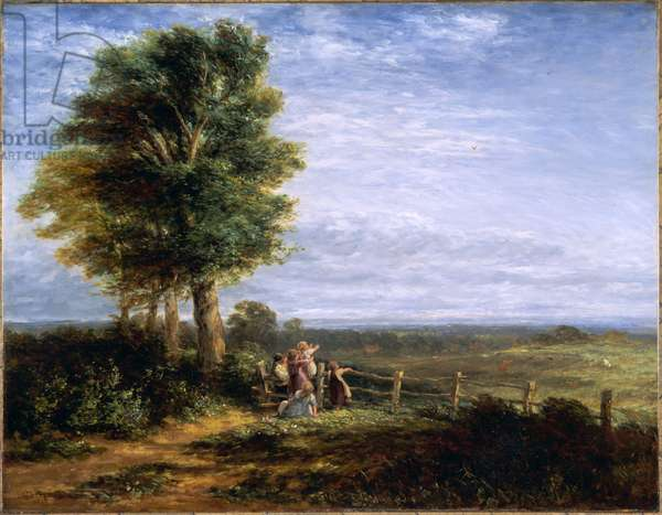 The Skylark, 1849 (oil on canvas)