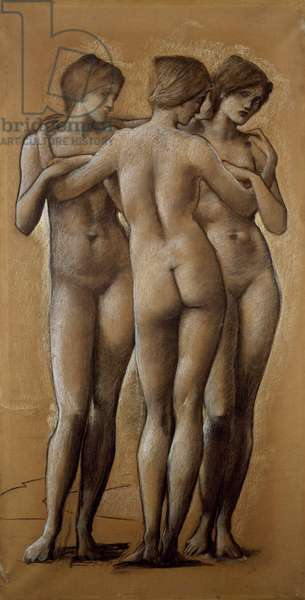 Venus Concordia - Study of the Three Graces, 1895 (chalk on paper)