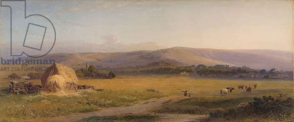South Downs Pastures, 1867 (w/c on paper)