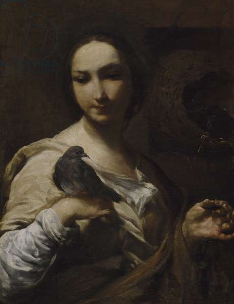 Girl Holding a Dove, 1721-27 (oil on canvas)
