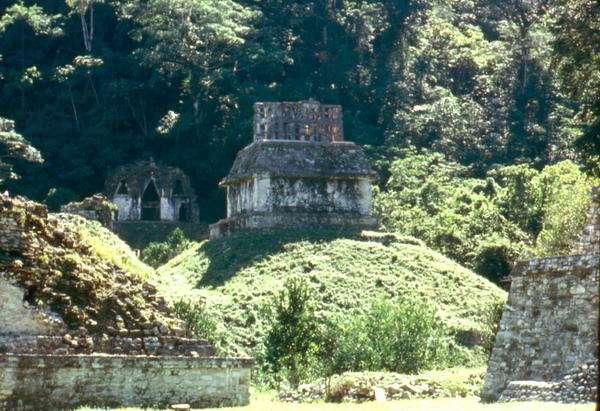 Mayan Temple XXI (photo)