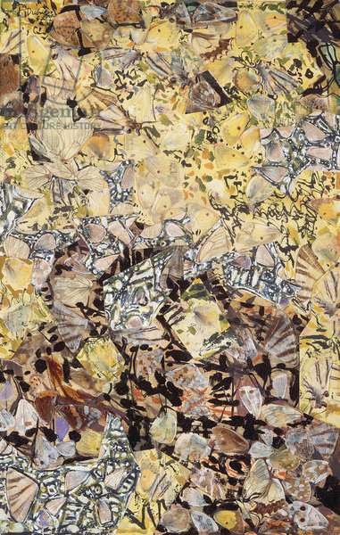 Landscape with Butterflies, 1957 (butterfly wings, gouache & paper)