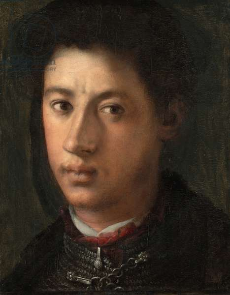 Alessandro de' Medici, 1534-35 (oil on panel)