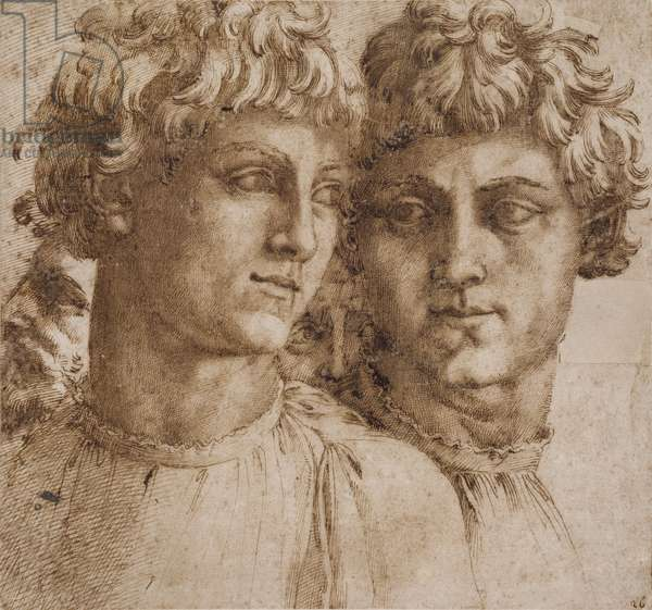 Two Studies of the Head of a Youth, c.1550 (pen & brown ink on tan paper, laid down on cream laid paper)