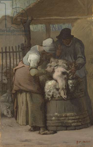 The Sheepshearers, 1857-61 (oil on canvas)