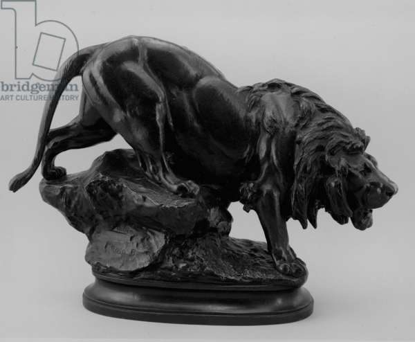 Lion, 1875-85 (bronze)