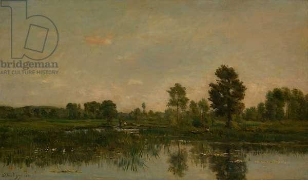 The Marsh, 1871 (oil on panel)