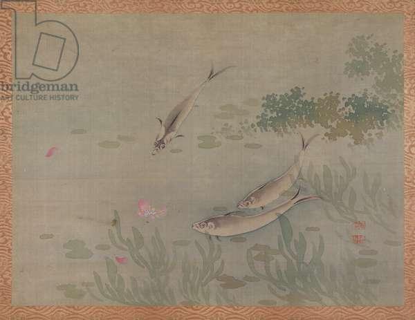 Fish, 1851 (watercolour on silk)