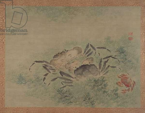 Crabs, 1851 (watercolour on silk)