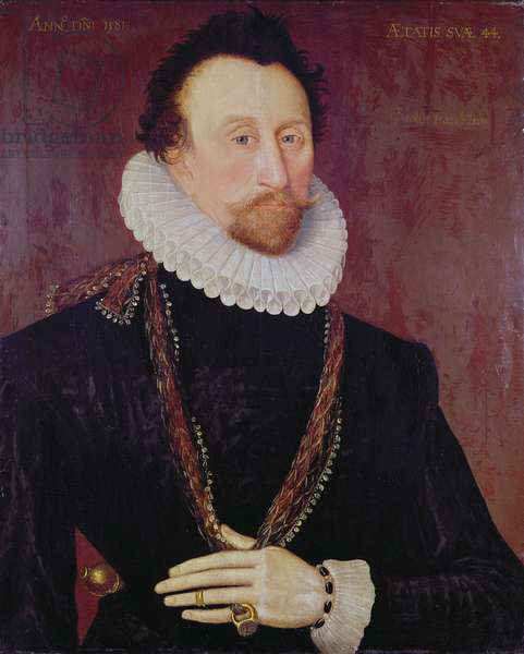 Portrait of Sir John Hawkins (1532-95) 1581 (oil on panel)