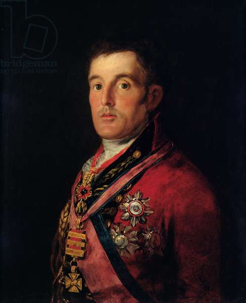 The Duke of Wellington (1769-1852) 1812-14 (oil on panel)
